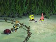 Club SpongeBob 107