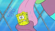 The Incredible Shrinking Sponge 159