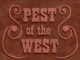 Губка Боб – Деспот Запада