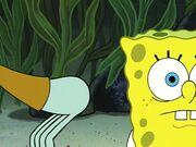 Club SpongeBob 374