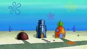 Houseworm squidhouse