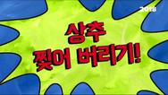 Lettucelacerationkorean