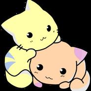 Golden kitty