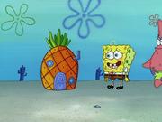 Home Sweet Pineapple 073