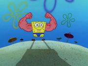 MuscleBob BuffPants 083
