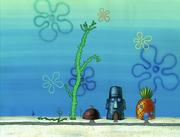 Club SpongeBob 036