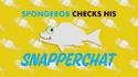 SpongeBob Checks His Snapper Chat