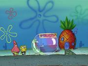 Bubblestand 154