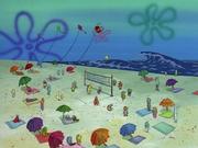 The Kind Sponge 017