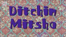Ditchinmitsho