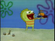 Kid Fish Billy & Plankton