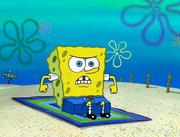SpongeGuard on Duty 035