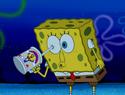 Blackened Sponge 103