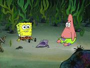 Club SpongeBob 095