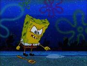 Plankton! 070