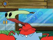 Plankton's Army 019