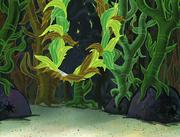 Club SpongeBob 166