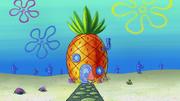 Patrick's Coupon 172