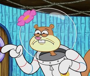 Sandy in Spongebob's Bad Habit