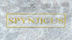 Spynjicus