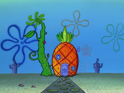 Home Sweet Pineapple 195