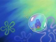 Bubblestand 181