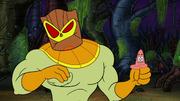 Swamp Mates 237