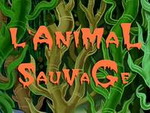 L'Animal sauvage
