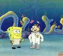 SpongeBob-Sandy Relationship