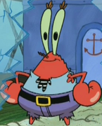 Mr. Krabs Pirate