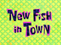 New Fish in Town title card