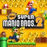 New Super Mario Bros. 2 box artwork