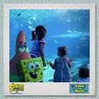 SpongeBob & Patrick Travel the World - Australia 2