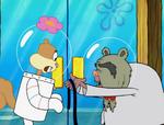 The Way of the Sponge 194