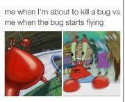 Confused krabs meme