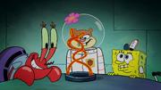 Krabby Patty Creature Feature 041
