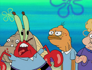 Mid-Life Crustacean 044