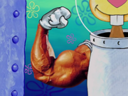 MuscleBob BuffPants 021