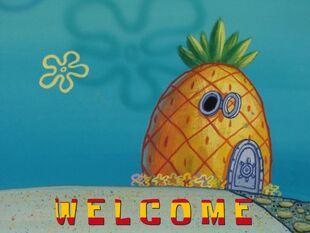Pineapple welcome