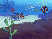 Spongebob-Suds Early Bikini Bottom