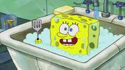 The Incredible Shrinking Sponge 231