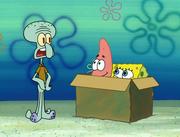 Idiot Box 026