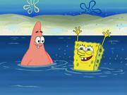 SpongeBoard 006