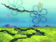 Club SpongeBob 113