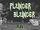 Plunder Blunder