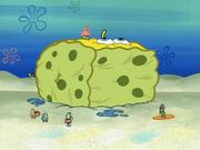 SpongeBoard 016