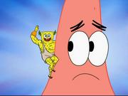 SpongeGod 023