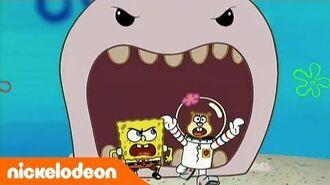 Губка Боб Квадратные Штаны - 2 сезон 20 серия - Nickelodeon Россия