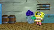 Eek, an Urchin! 180
