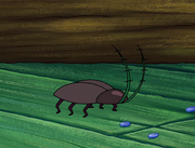 Plankton's Army 007